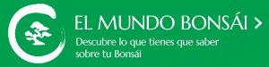Comprar Bonsai Online Banner Promo Mundo Bonsai 3