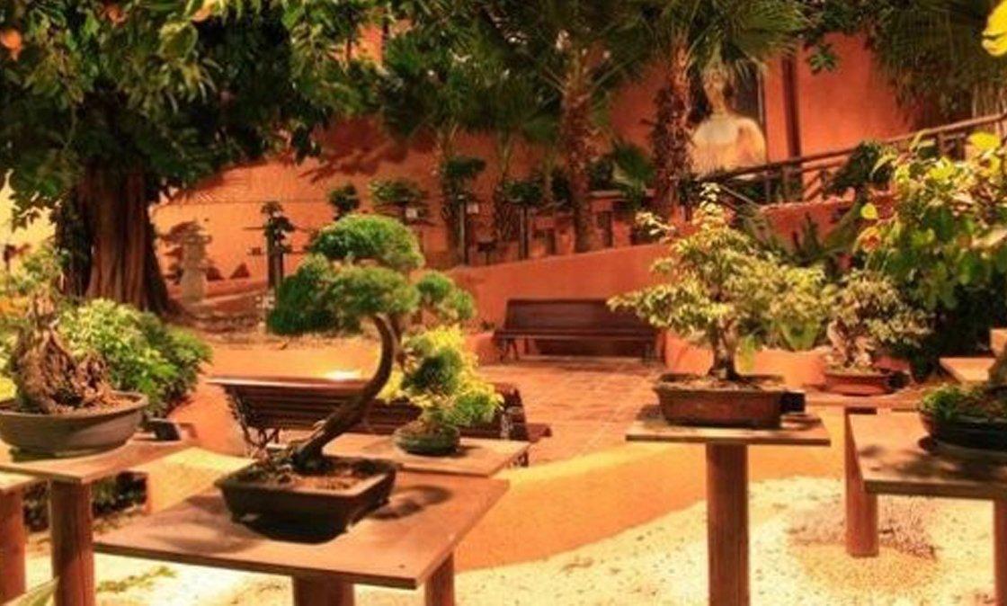 decoracion-jardin