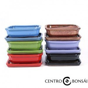 BASIC Tiesto rectangular 15 cm con plato colores
