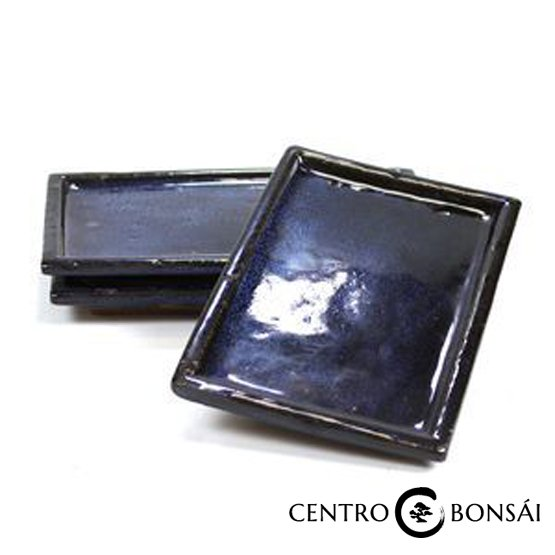 Plato rectangular 25 cm azul