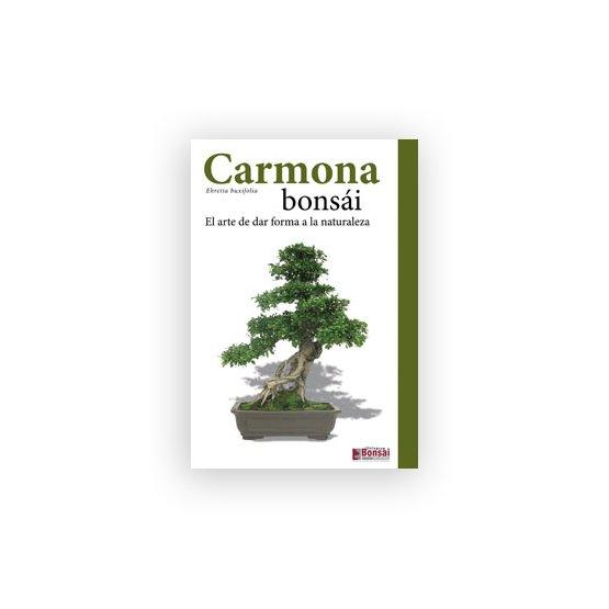 Guía Cuidado Bonsái Carmona