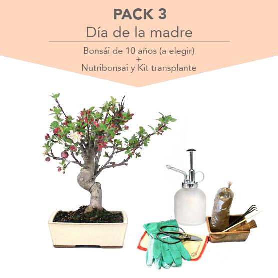 Pack 3 Dia de la Madre