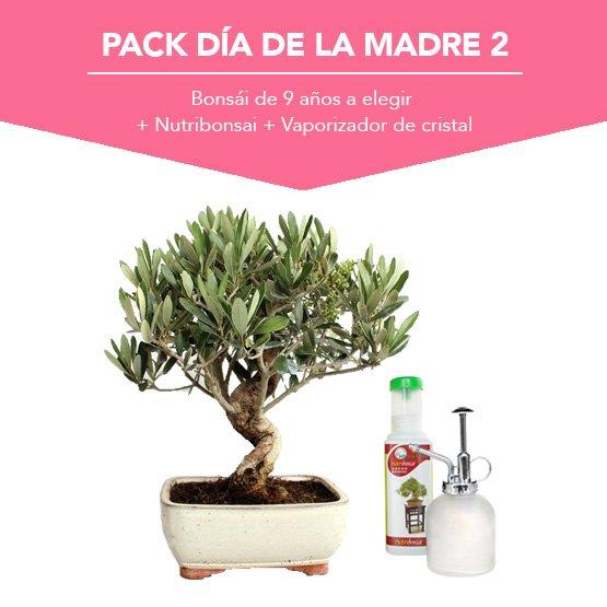 Pack Dia de la Madre 2