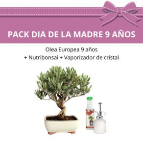 Pack-especial-dia-la-Madre-2