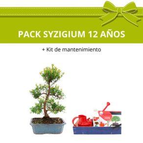 PACK-Bonsai-Syzigium-buxifolium-12-anos-kit-mantenimiento