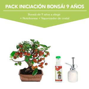 Pack Iniciacion Bonsai 9