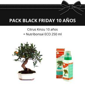 Pack-black friday-citrus-kinzu-mandarino-fruto-10-anos