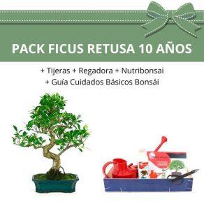 Pack-bonsai-ficus-retusa-10-anos