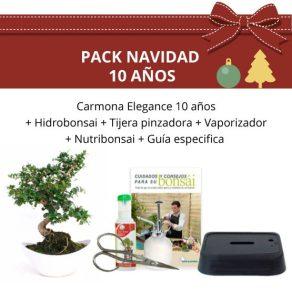 Pack-bonsai-Carmona-Elegance-10-anos