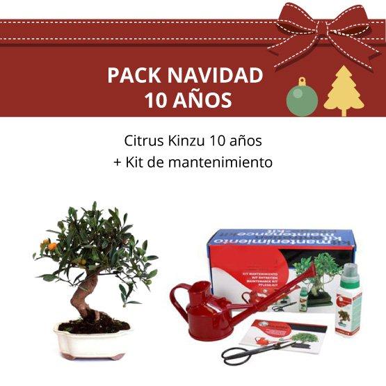 Pack-bonsai-citrus-kinzu