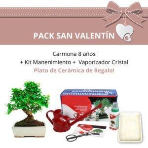Pack-San-Valentin-Bonsi-8-anos-Carmona