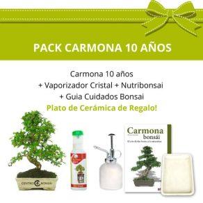 Pack-bonsai-carmona-microphylla-10-anos+plato