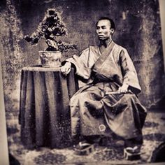 HISTORIA DEL bonsai