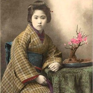 bonsái cerezo japonés historia