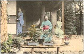 bonsai japonés historia