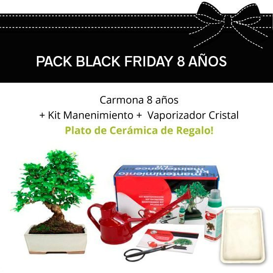 PACK-BLACK-FRIDAY-CARMONA-8
