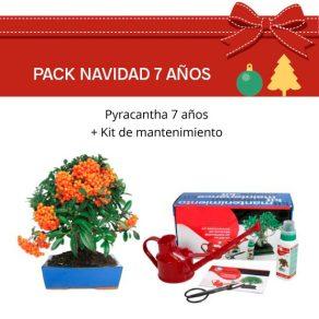 PACK-NAVIDAD-7-PYRACANTHA
