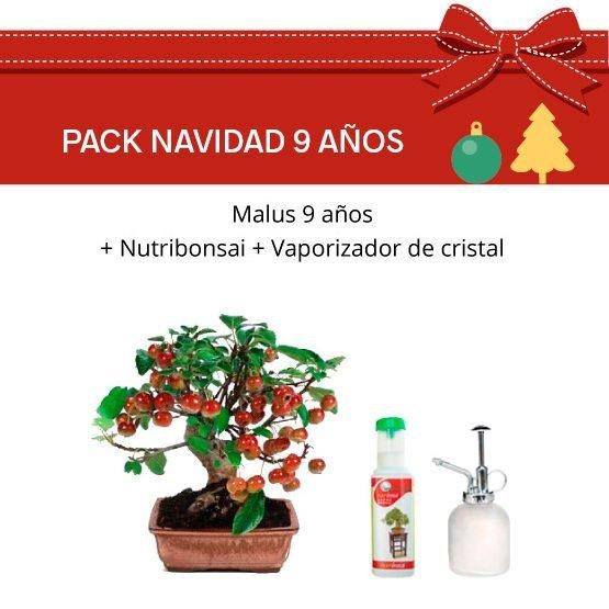 Pack Bonsái Malus 9 años