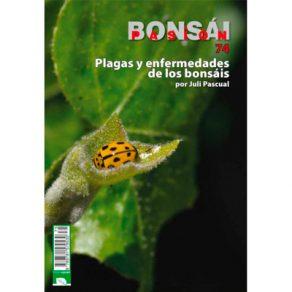 Plagas enfermedades bonsai
