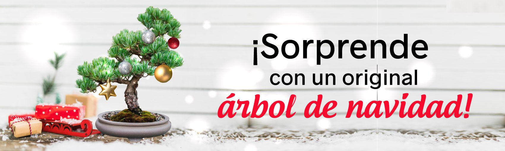navidad-centrobonsai-2018-2